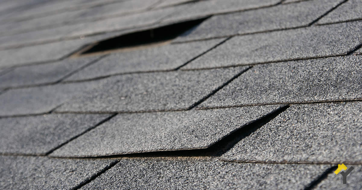 Does Your Home Need New Shingle Roofing Ypsilanti Roofing