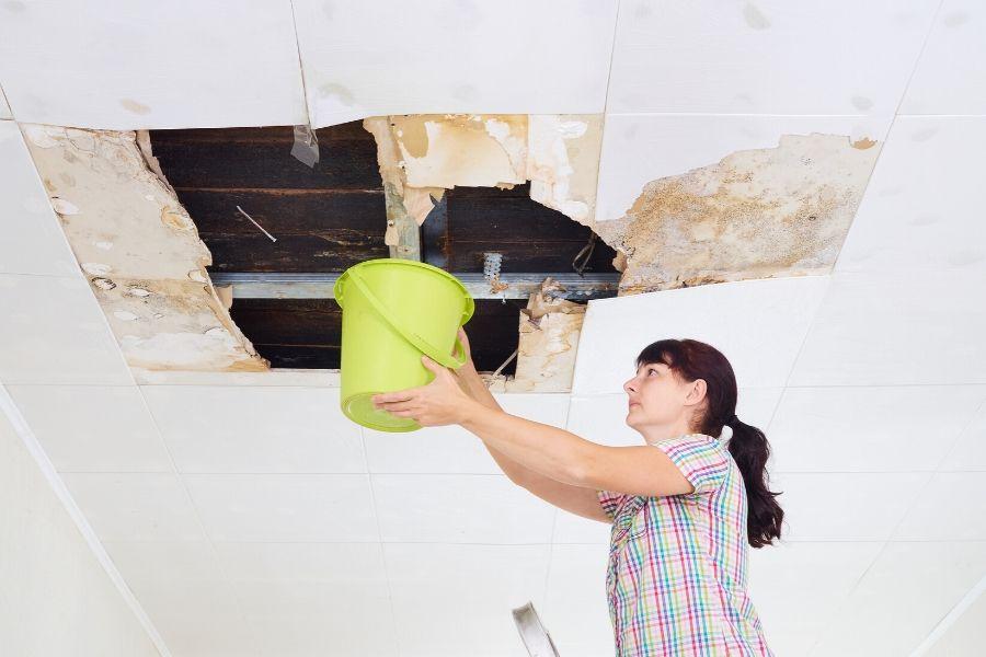 Key Signs You Need Shingle Roof Repair in Ypsilanti Michigan