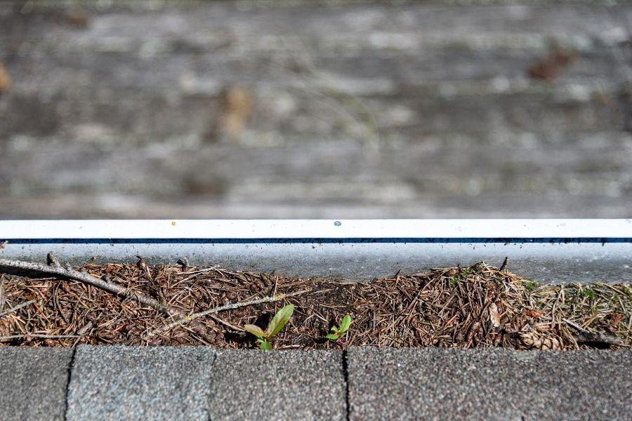 Tips For Maintaining Your Roofing in Ypsilanti Michigan