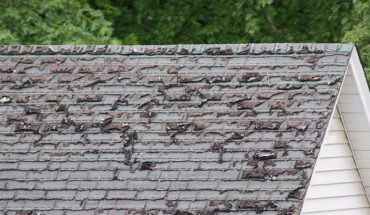 How to Tell Whether Your Home Needs Roof Repair in Ypsilanti Michigan
